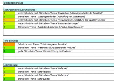 dokumentation-der-swot-analyse-kriterienbewertung